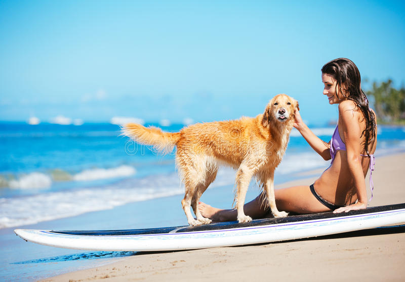 Young Woman Surfing with Her Dog. Attractive Young Woman Surfing with her Dog. Sharing surfboard with Golden Retriever stock photo