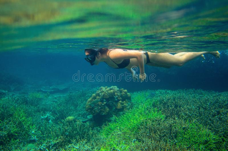 Young woman swimming on sea surface. Snorkel in coral reef of tropical sea. Woman in snorkeling mask underwater photo stock photography