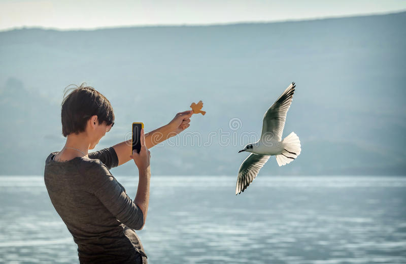 Young woman taking a picture with her phone of Flock of seagulls stock photos