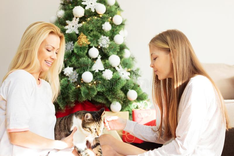 Young woman and teenage daughter playing with pet cat in front of a decorated Christmas tree on Christmas day royalty free stock image