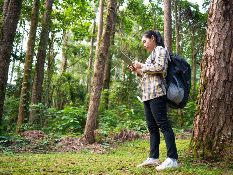 Young woman traveler searches GPS coordinates on tablet in forest on summer vacations day. Lifestyle hiking concept stock image