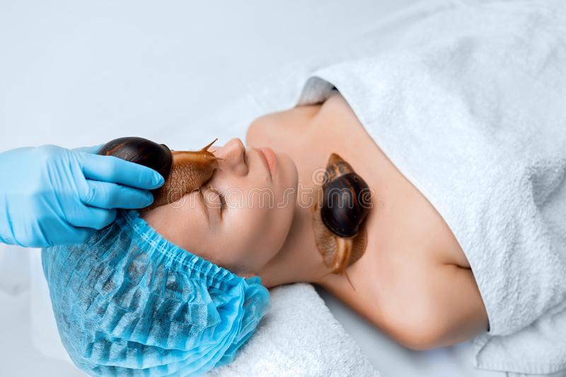 Young woman undergoing treatment with giant Achatina snails in beauty salon stock photography