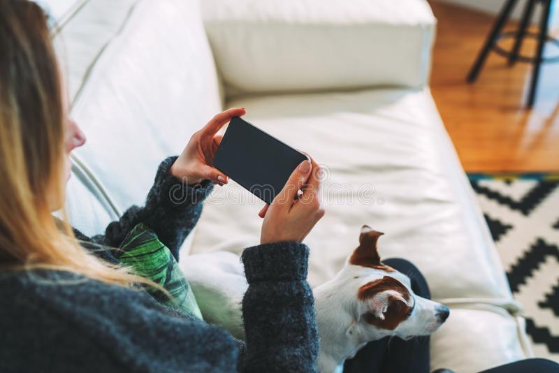 Young woman using smartphone. There is dog nearby. Girl working, learning online, checking email. Distance work royalty free stock photography