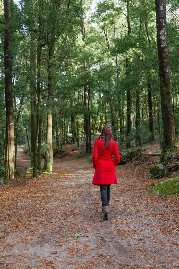 Young woman walking alone on a forest royalty free stock images