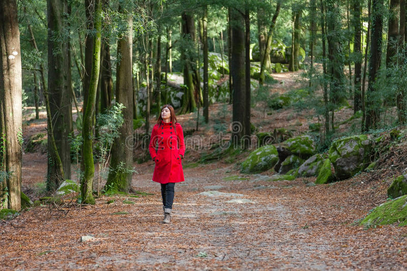 Young woman walking alone on a forest royalty free stock photography