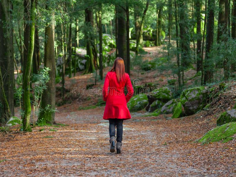 Young woman walking away alone on forest path wearing red long coat royalty free stock photography