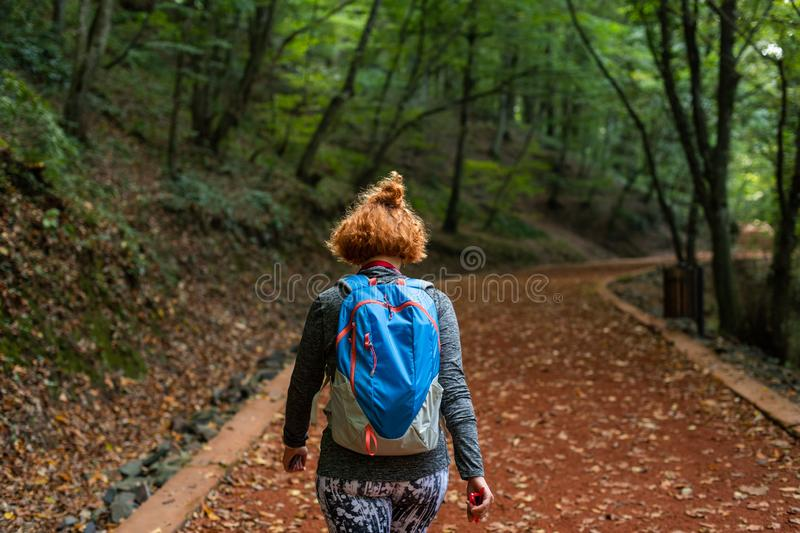 Young woman walking in forest. Adventure style. Autumn colours. Beautiful nature and young girl. royalty free stock image