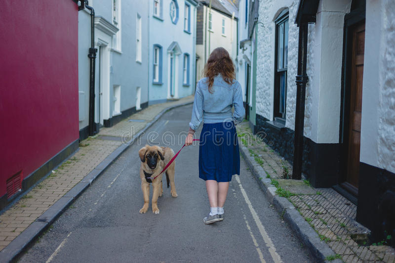 Young woman walking Leonberger puppy. A young woman is walking her Leonberger puppy outside in a small town stock images
