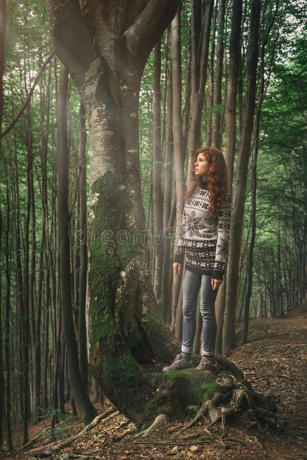 Download Young Woman Walking In Magic Forest Stock Photo - Image: 83703680