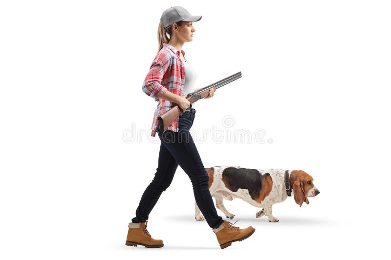 Young woman walking with a shotgun and a basset hound dog royalty free stock photos