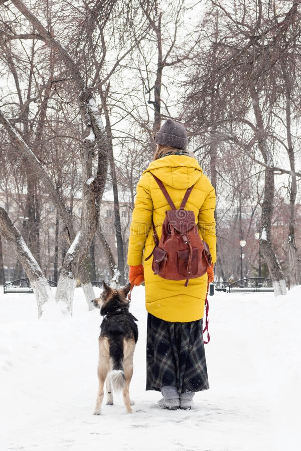 Young woman is walking in a snowy winter park with her dog. Back view stock photos