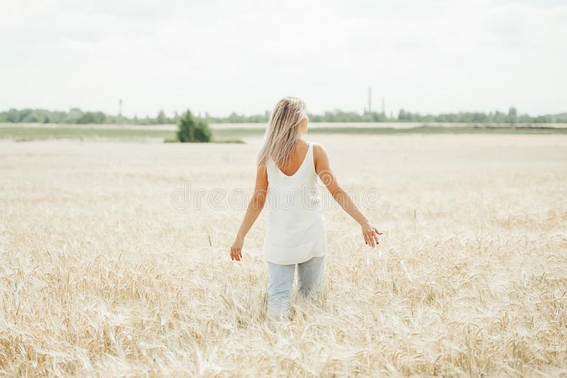 Young woman walking in the wheat field. Back view stock images