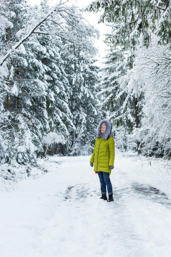 A young woman is walking through the winter forest stock photography