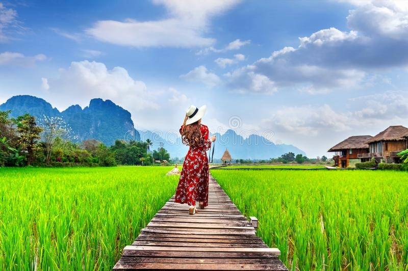 Young woman walking on wooden path with green rice field in Vang Vieng, Laos royalty free stock photo