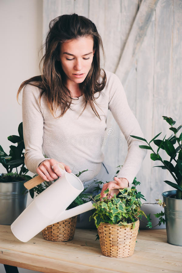 Young woman watering flowerpots at home. Casual lifestyle series in modern scandinavian interior. Young hipster woman watering flowerpots at home. Casual stock photography