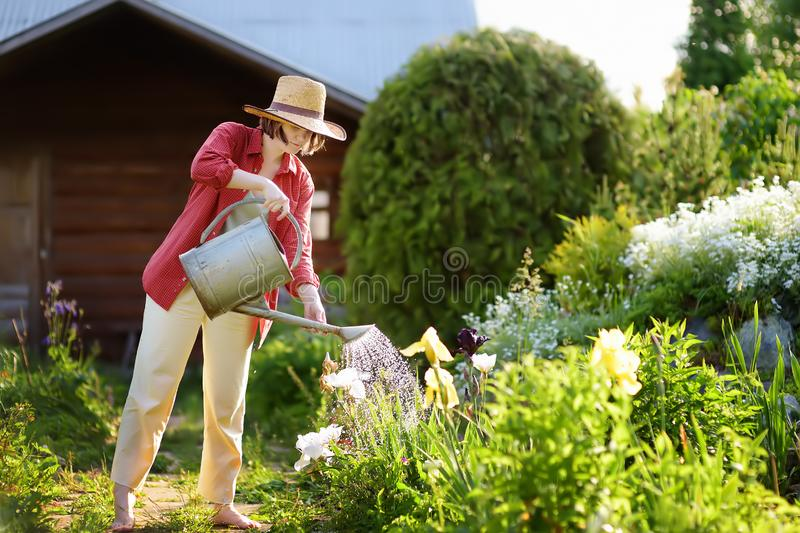 Young woman watering plants in the garden at summer sunny day stock photography