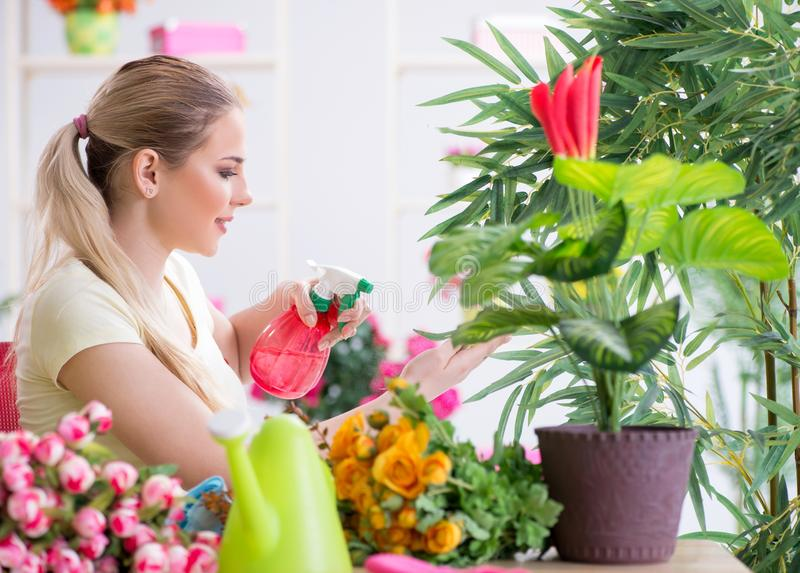 Young woman watering plants in her garden royalty free stock image