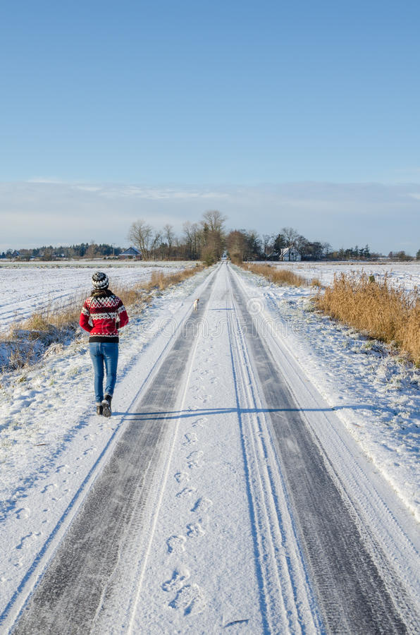 Young woman wearing red Norwegian jumper going for a winter walk with dog on snow covered road on a beautiful sunny day stock photos