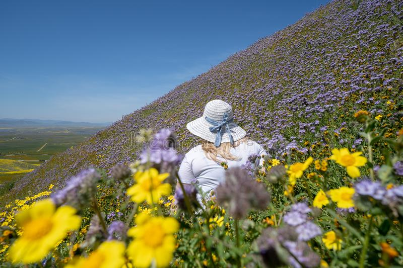Young woman wearing a white straw hat sits in a field of purple and yellow wildflowers.  royalty free stock photos