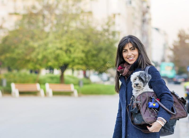 Young woman with white dog in a carry bag. Young woman with white dog in carry bag in the park stock photos