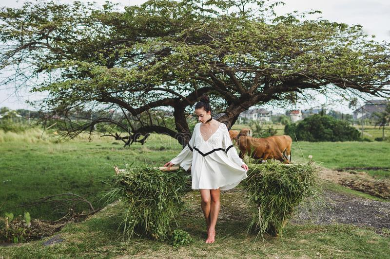 Young woman in white tunic. Fashion style, curly hair, light dress. Young woman in white tunic in rice fields Bali in Tegallalang. Rustic Ubud village landscape royalty free stock photos