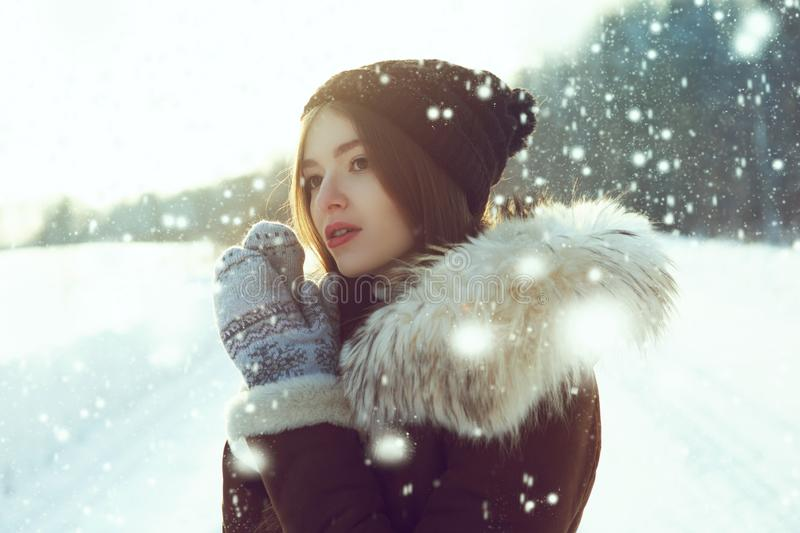 Young woman winter portrait. Shallow dof. Young woman at winter stock photos