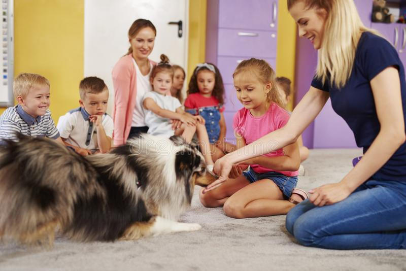 Young woman working with dog during therapy. Young women working with dog during therapy in the preschool royalty free stock photos