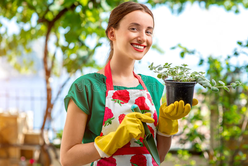 Young woman working in the garden. Young woman in apron and working gloves taking care for flower in in the garden royalty free stock image