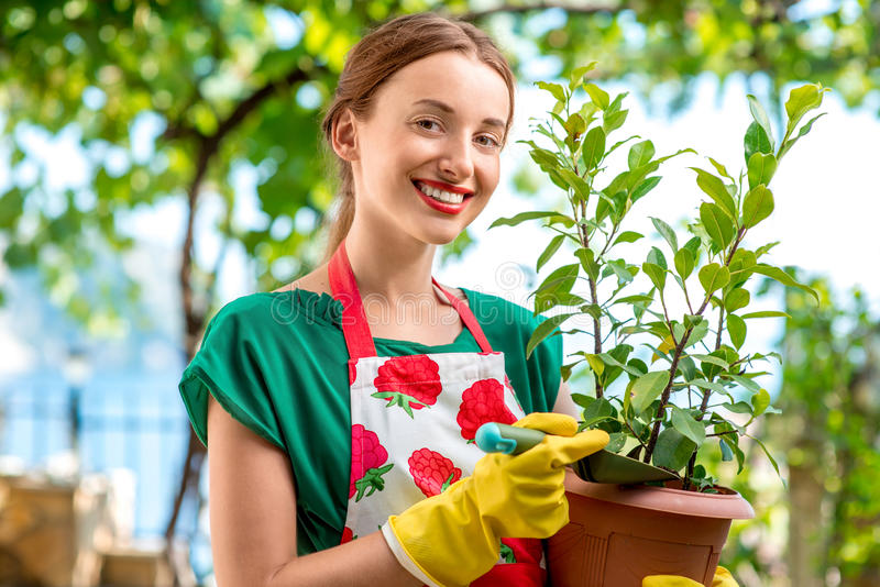 Young woman working in the garden. Young woman in apron and working gloves taking care for flower in in the garden stock photos
