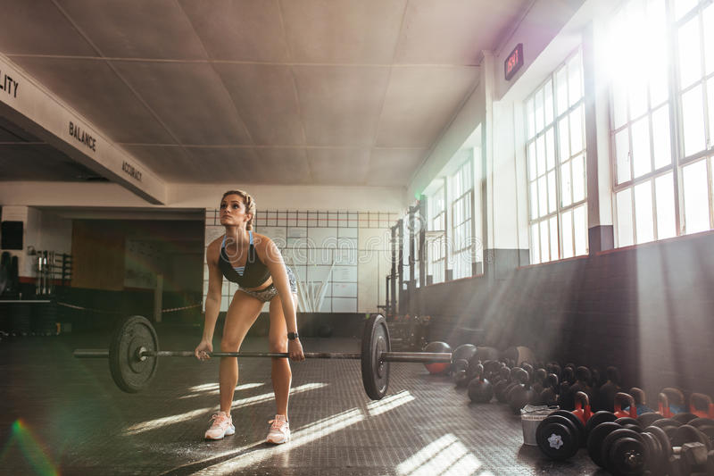 Young woman working out at the gymnasium. royalty free stock photos