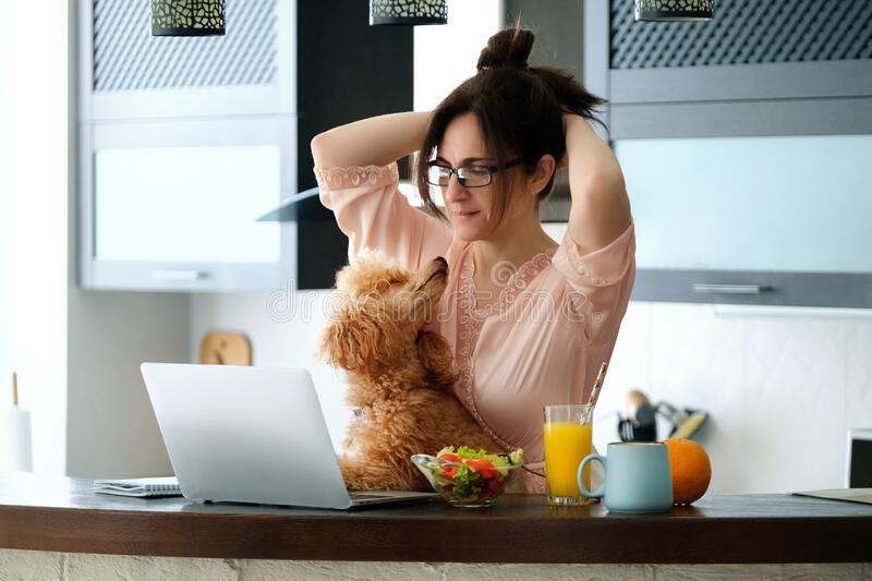 Young woman with her dog working using a laptop at home. The young woman is working remotely. Young woman with her dog working using a laptop at home. Concept royalty free stock image