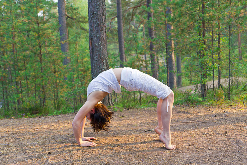 Download Young Woman In Yoga Bow Pose In The Forest Stock Photo - Image: 28685332