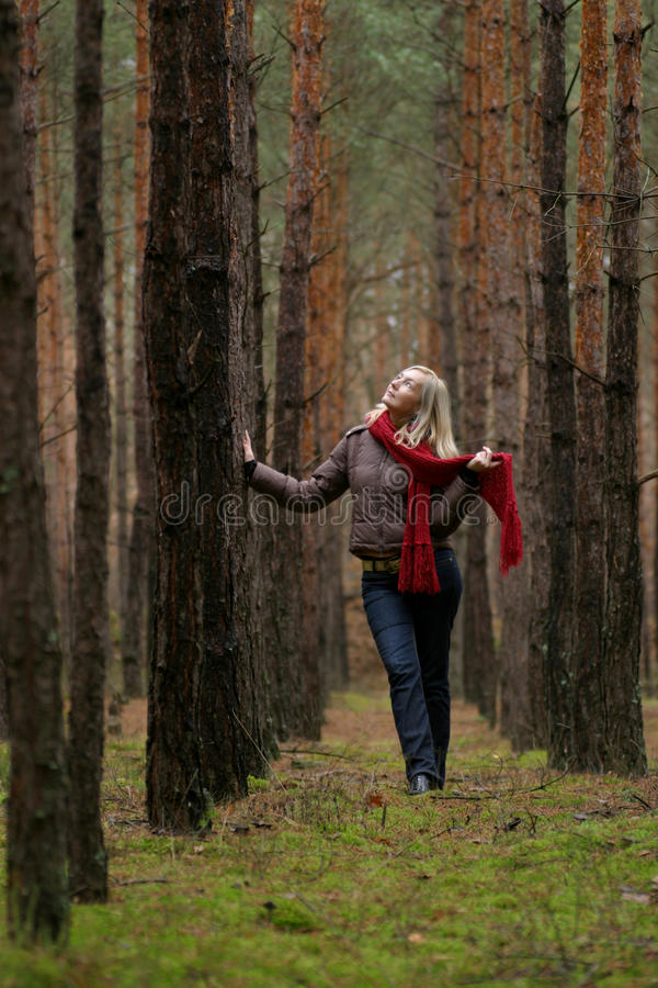 Download Young women in forest stock image. Image of nature, emotion - 11748261