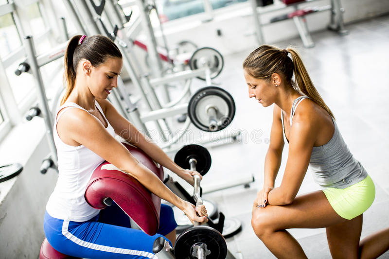 Young women have weight training in the gym stock images