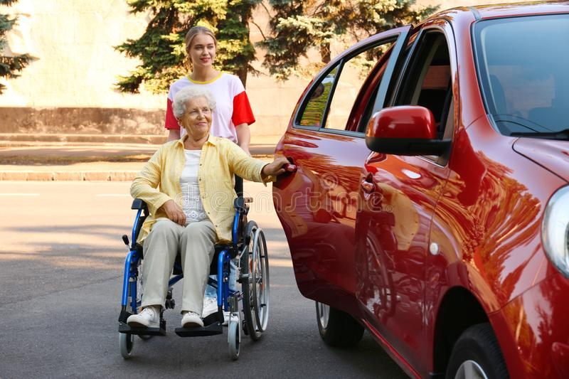 Young woman helping disabled grandmother in wheelchair to get into car stock image