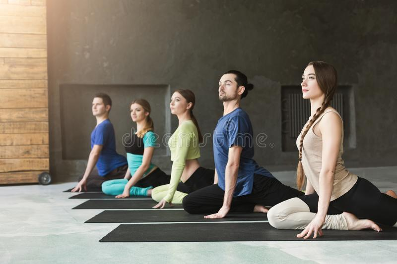 Young women and men in yoga class, relax meditation pose. Young women and men in yoga class, meditation exercises. Lotus pose for relaxation. Healthy lifestyle stock image