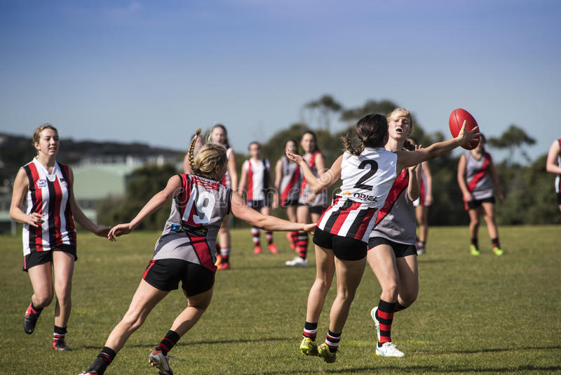 Young women play Australian Rules Football royalty free stock photos