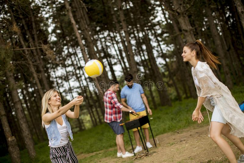 Young women playing volleyball on picnik in spring nature stock photography