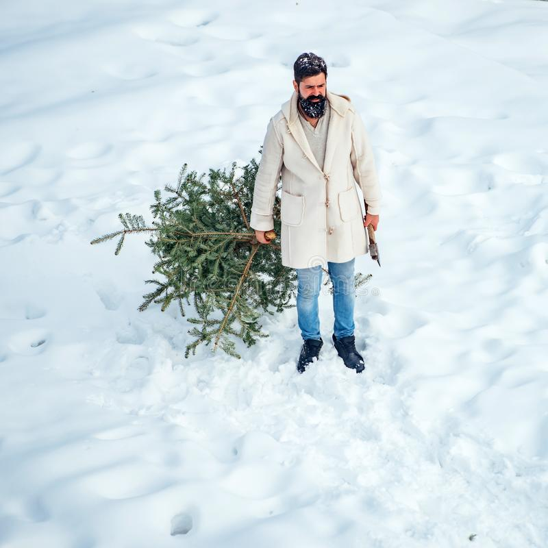 Young woodcutter winter portrait. Christmas lumberjack with axe and Christmas tree. Santa Claus with Christmas tree stock image