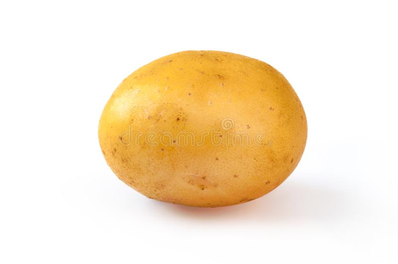 Young yellow potato, isolated on white. Close up royalty free stock photography
