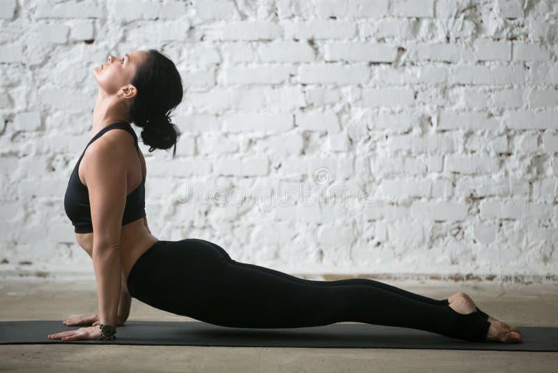Young yogi attractive woman in upward facing dog pose, studio. Mid aged yogi attractive woman practicing yoga concept, stretching in upward facing dog exercise stock photography