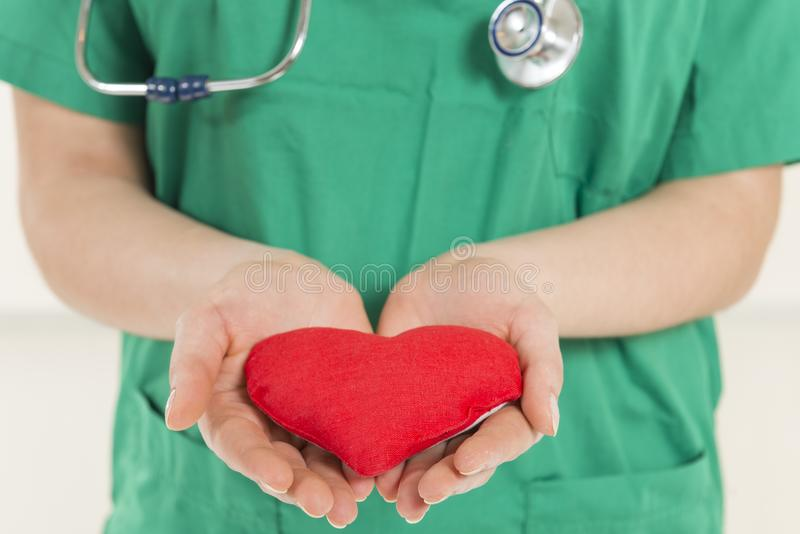 Your heart in right hands stock photo