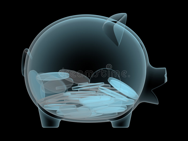 Your wealth. X-ray photography of piggy bank vector illustration