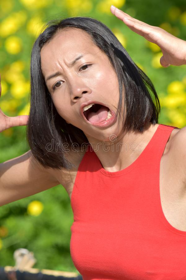 Youthful Adult Female Making Funny Faces. An attractive and asian person royalty free stock photography