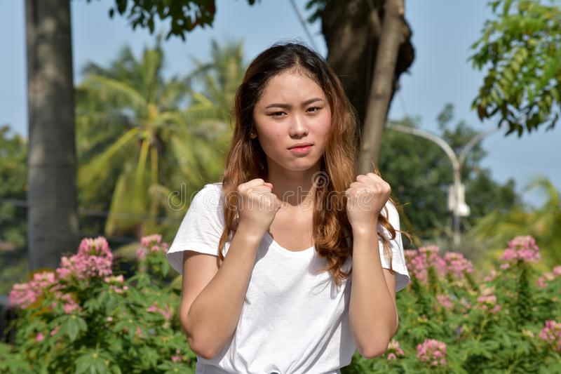 Youthful Female And Anger. An attractive young asian person stock image