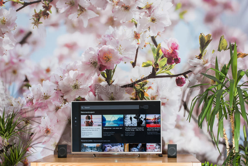 YouTube app on Sony smart TV stock images