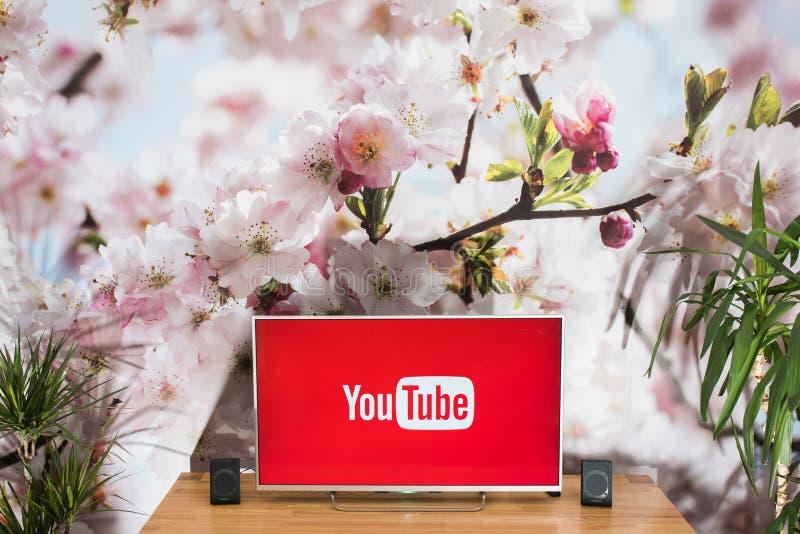 YouTube app on Sony smart TV royalty free stock photo