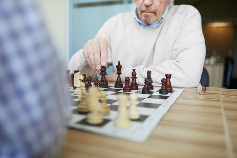 Yrkesmässig grandmaster royaltyfri foto