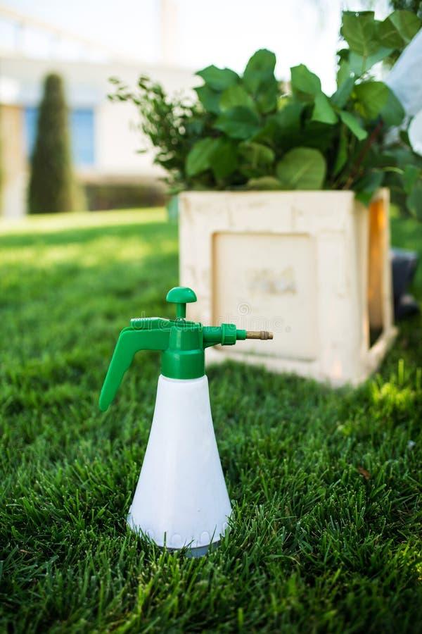 Yrkesmässig hjälpmedelblomsterhandlare - sprej för blommor Bespruta en flaska av ställningar för grön färg på gräsmattan i bakgru royaltyfri bild
