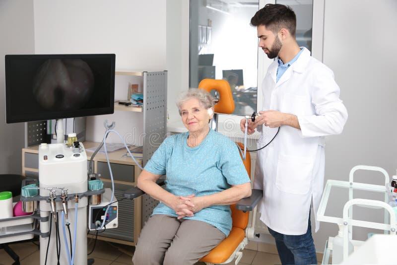 Yrkesmässig otolaryngologist som undersöker den höga kvinnan med endoscopen i klinik royaltyfri bild